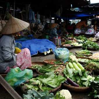 Vegetable Market - Hoi An, Vietnam
