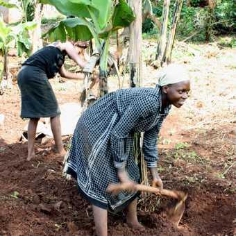 School pupils - village walk, near Jinja