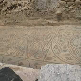 Recently uncovered mosaic at Arycanada