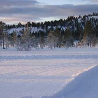 snow glitter