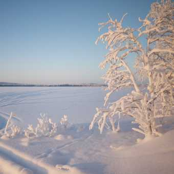 Frozen lakes abound in Lapland