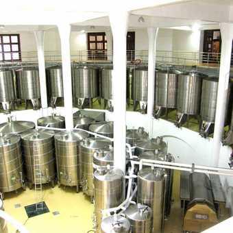 Vergelegen Winery