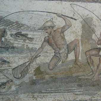 just one of many fine mosaics on display at Jamahiriya Museum