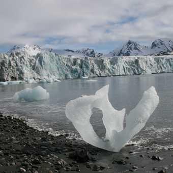 Iceberg on the shore