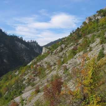 Autumn in Buinovo Gorge_3