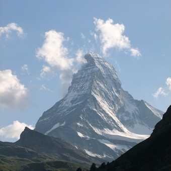 New arrival at Zermatt