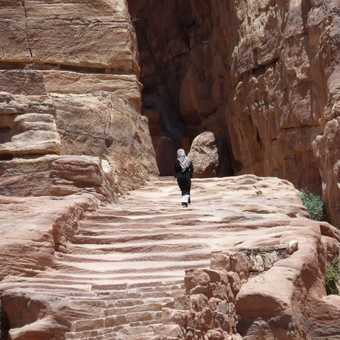 Journey to the Monastery  Petra