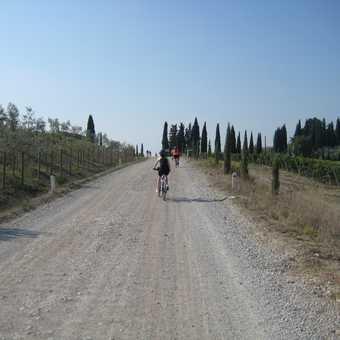 First taste of the 'Strada Bianca' (aka gravelled road)