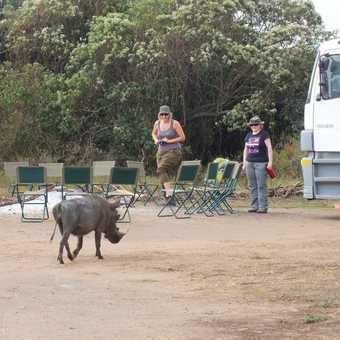 Crossing the Equator in Uganda