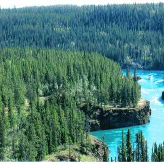 Yukon River at Whitehorse
