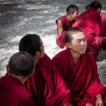 Listening Monks at Sera Monastery, Lhasa