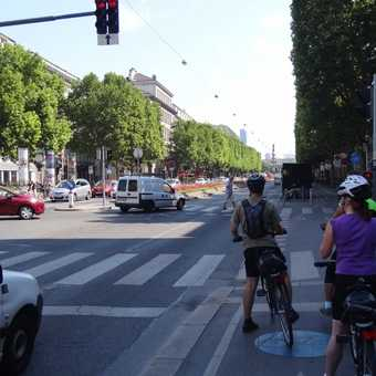 Playing with the Viennese rush hour traffic