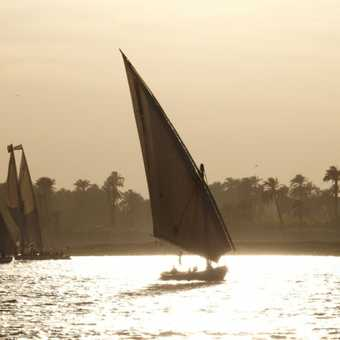 Feluccas on the Nile, Luxor