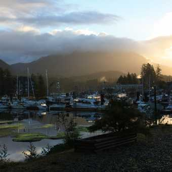 View of the marina from the hotel, Ucluelet