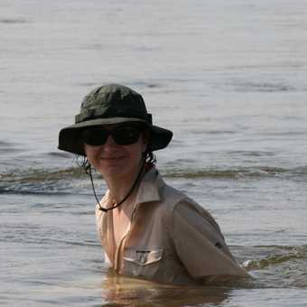 Cooling off in the Zambezi