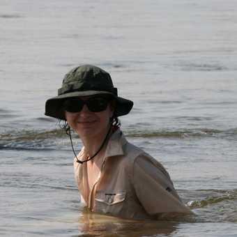 Cooling off in the Zambezi