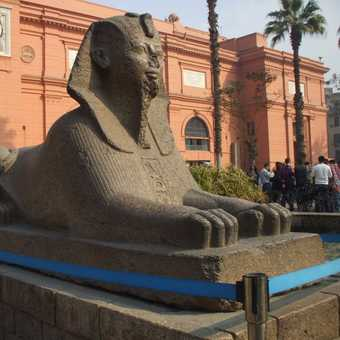 Cairo museum 1 day before the protests