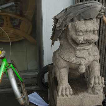 Lion statue and mop