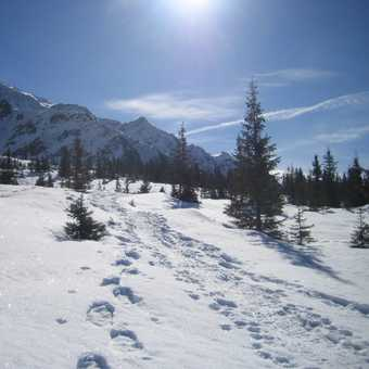 the best snowshoeing