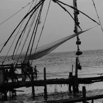 Cinese fishing nets