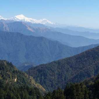 Forever hills - Near Tadapani