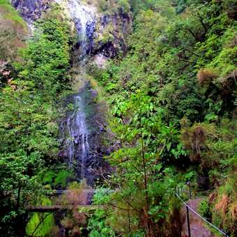 Waterfall Caldeirao Verde Walk