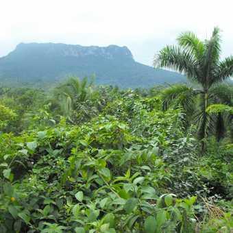 El Yunque Mountain