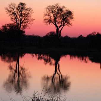 Sunset at Moremi