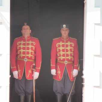squinting guards
