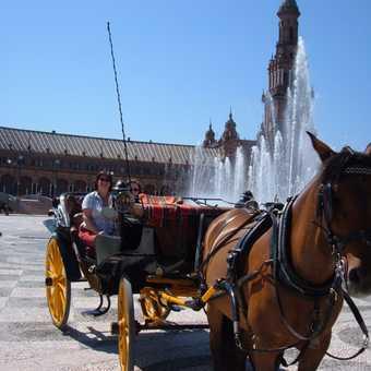 Carriage at Plaza Espania fountain