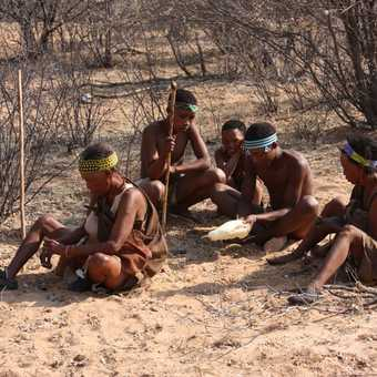 Khoisan eating foraged food - Kalahari