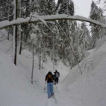 Snowshoing down a narrow valley