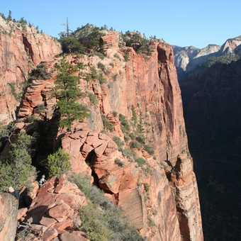 View from Angels Landing Zion