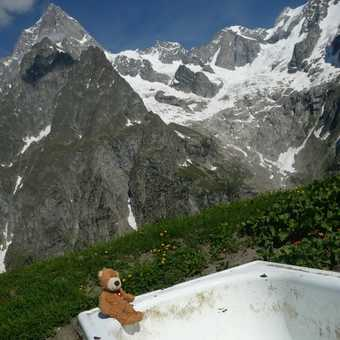Chesney takes a bath
