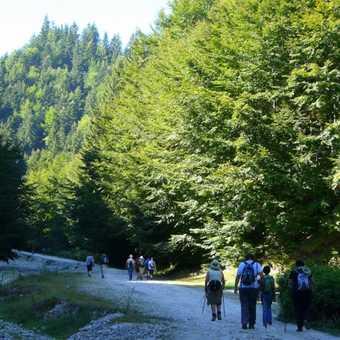 Entering Zarnesti Gorge