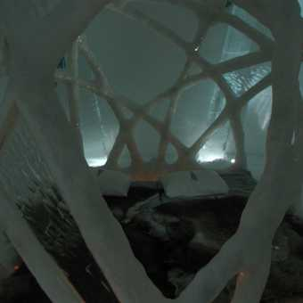 Ice room - butterfly cocoon theme - Ice Hotel