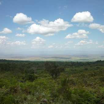 Plains of Kenya