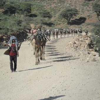 Ethiopian Tour