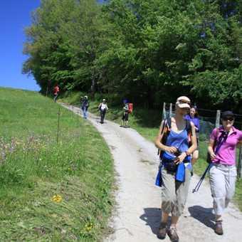 Descending towards Lago di Vagli.
