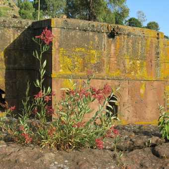 Lalibela Rock-cut church