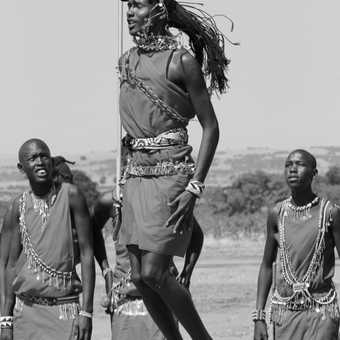 Masai Warriour