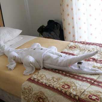 Towel Art!