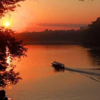 Tambopata Sunrise