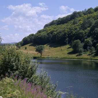 Donje Bare Lake