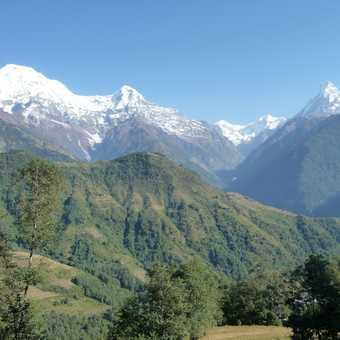 Annapurna South, Hiunchuli and Machapuchare