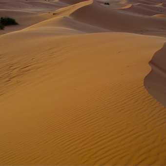 Sahara sunset