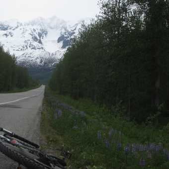 Cycling on the Kenai peninsula