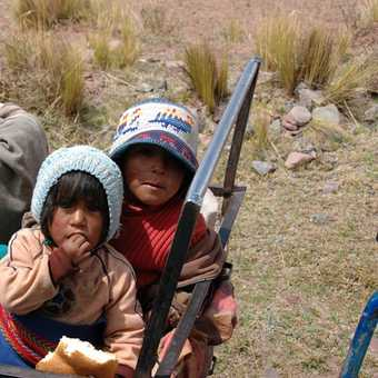 Children on road to Puno