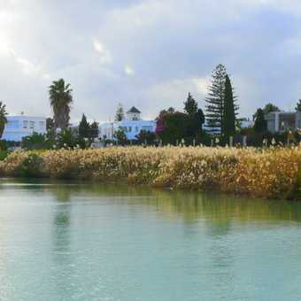 Carthage - Harbour