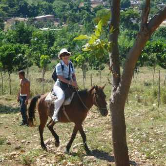 A DAY OUT ON HORSEBACK ...
